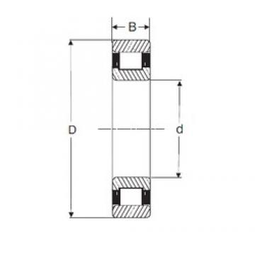 110 mm x 240 mm x 50 mm  SIGMA N 322 cylindrical roller bearings
