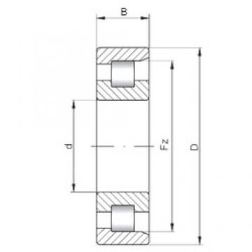 17 mm x 40 mm x 12 mm  ISO NF203 cylindrical roller bearings